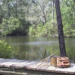 Artesian Lakes - Fishing